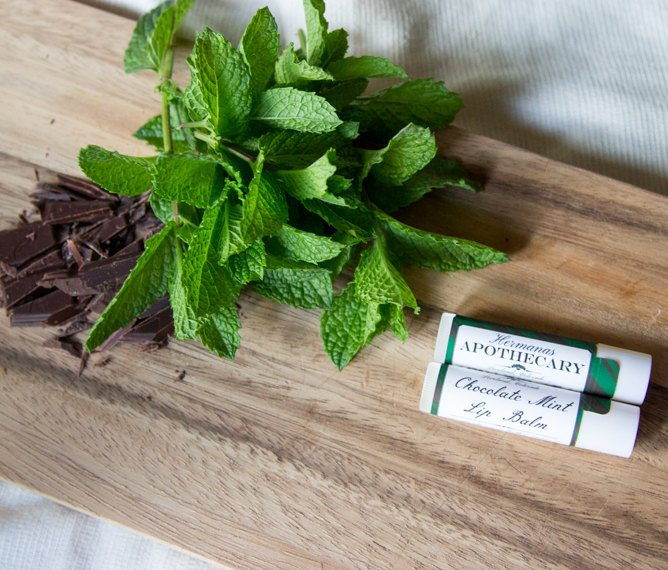 Chocolate Mint Lip Balm