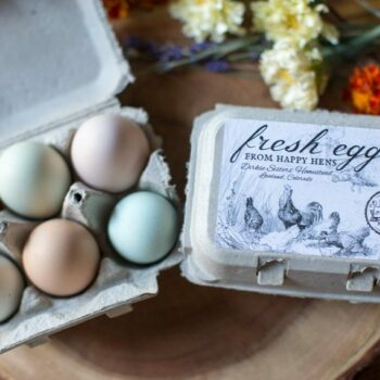 Custom Egg Carton Labels