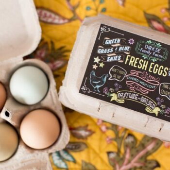 Customizable Chalkboard Style Egg Carton Label - Fresh Eggs - Pasture Raised
