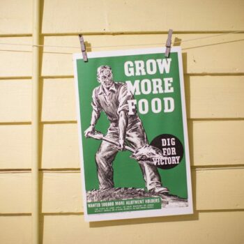 Grow More Food - Dig For Victory Poster