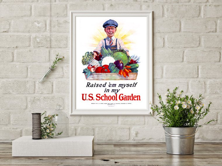 Raised 'em Myself in my US School Garden
