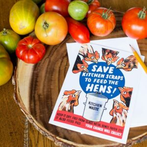 Save Kitchen Scraps to Feed the Hens Greeting Card