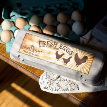 Standard Dozen Rooster at Sunrise Egg Carton Label