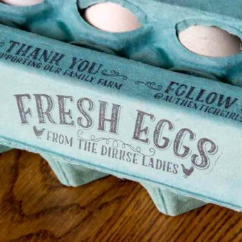 custom-egg-carton-stamp-set_0546