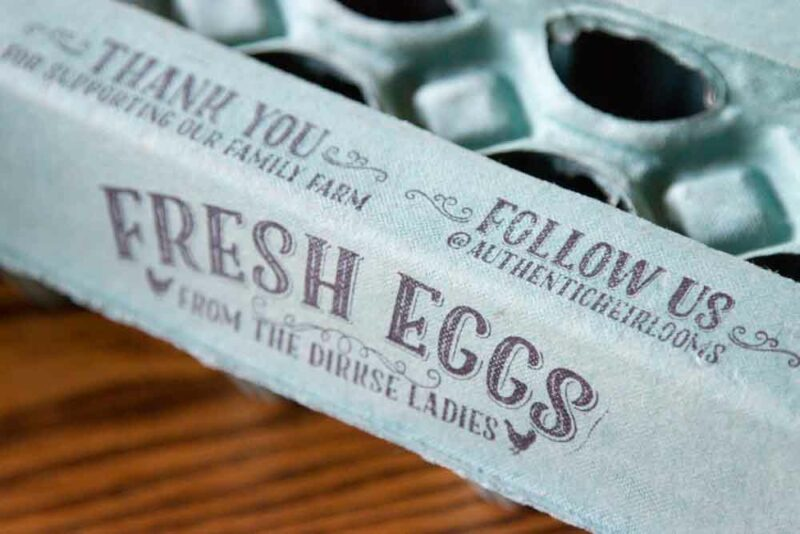 Egg Carton Stamps Set - Fresh Eggs - Family Farm