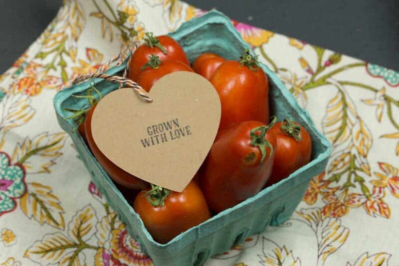 Grown With Love Mini with Stamp Heart Hang Tag