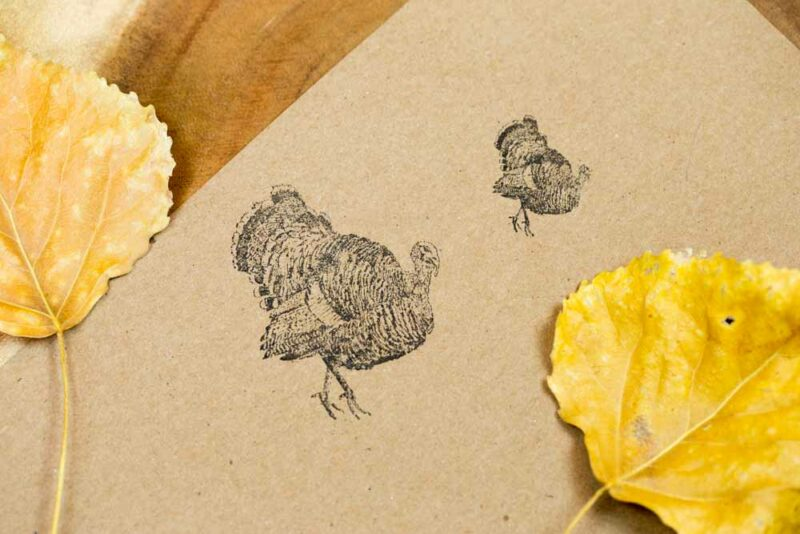Heritage Breed Turkey Stamp for Thanksgiving