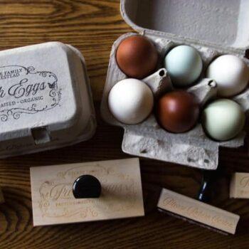 Egg Carton Stamps