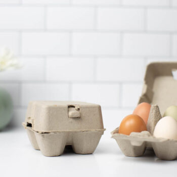 4 Egg Carton - Natural Pulp