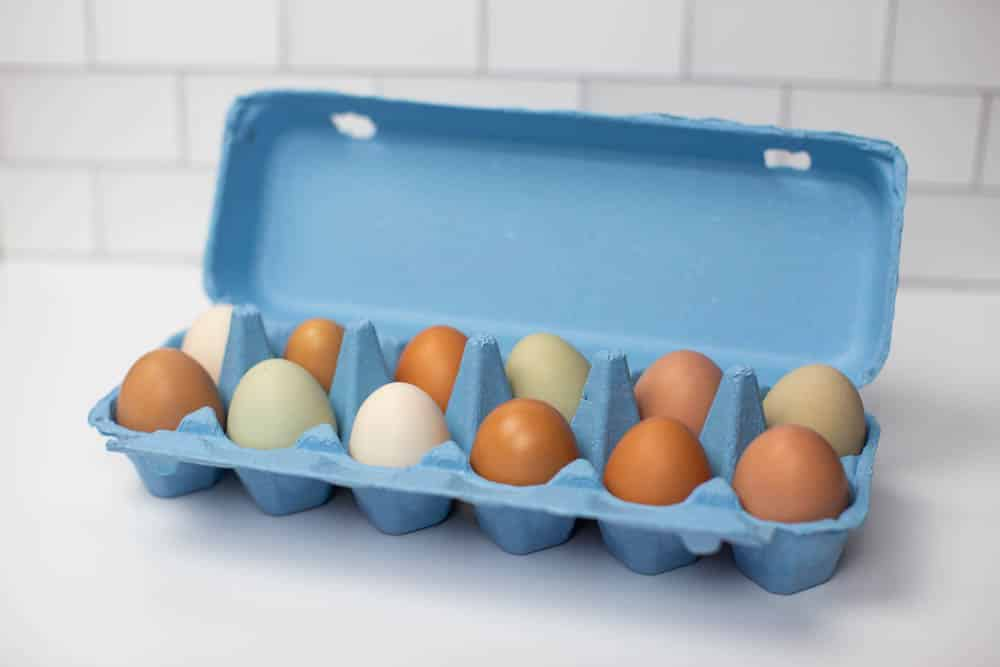 Blue Full Dozen Egg Carton - Flat Top