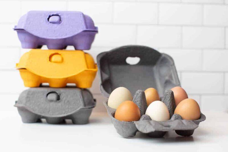 Charcoal, Purple and Orange Orange Half Dozen Egg Cartons