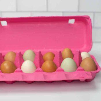 Pink Full Dozen Egg Carton - Flat Top